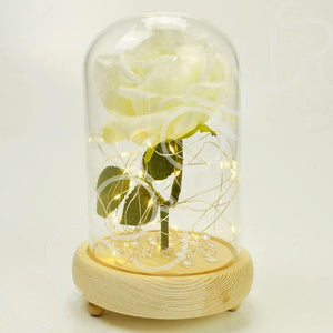 Snow White Handmade Enchanted Rose in Glass Dome Bell Jar with LED Lights - Angraves Memorials