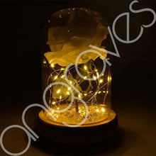 Load image into Gallery viewer, Snow White Handmade Enchanted Rose in Glass Dome Bell Jar with LED Lights - Angraves Memorials