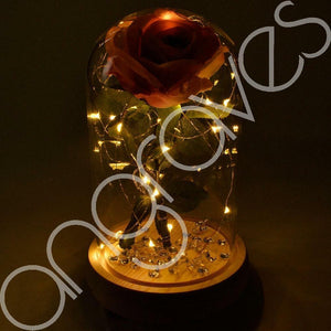Vintage Pink Handmade Enchanted Rose in Glass Dome Bell Jar with LED Lights