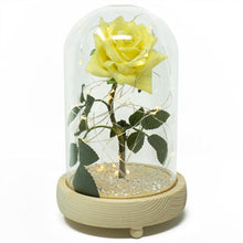 Load image into Gallery viewer, Yellow Friendship Sparkle Handmade Enchanted Rose with Glass Dome Bell Jar and LED Lights (23cm)