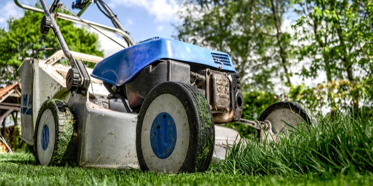 Must-Have Garden And Lawn Care Equipment