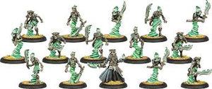 Cryx: Blackbane's Ghost Raiders Character Unit BOX (15)