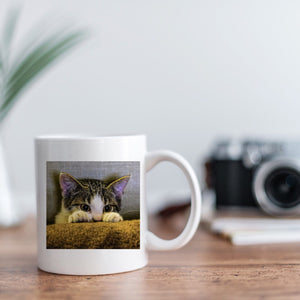 Cat Lover Photo Mugs