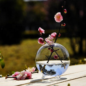 Clear Ball Glass Vase Terrarium Hydroponic