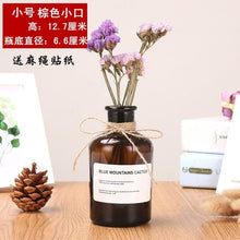 Load image into Gallery viewer, Reagent  Hydroponic Dried Flower Small Vase