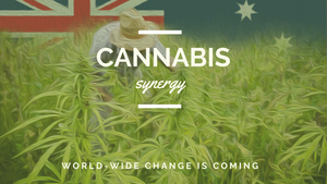 cannabis referendum new z