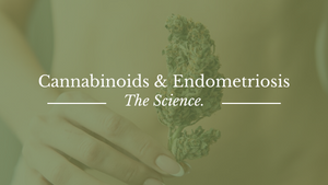 How Hemp Cannabinoids Work for Endometriosis
