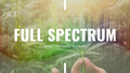 Full Spectrum Extract from Hemp: What You Need To Know