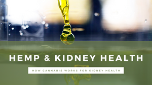 cannabis sativa seed oil for kidney health