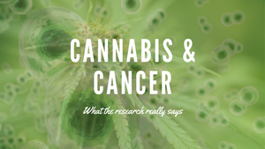 Does CBD Help Lung Cancer
