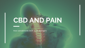 What pain does CBD oil help