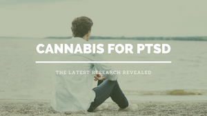 Terpenes for PTSD