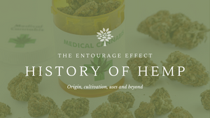 the entourage effect cannabis nz