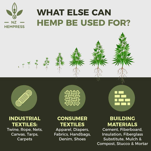 hemp uses nz in new zealand