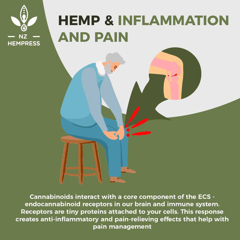 is hemp and cbd the same thing