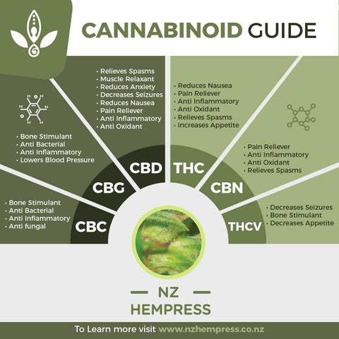 full spectrum hemp oil cannabinoids