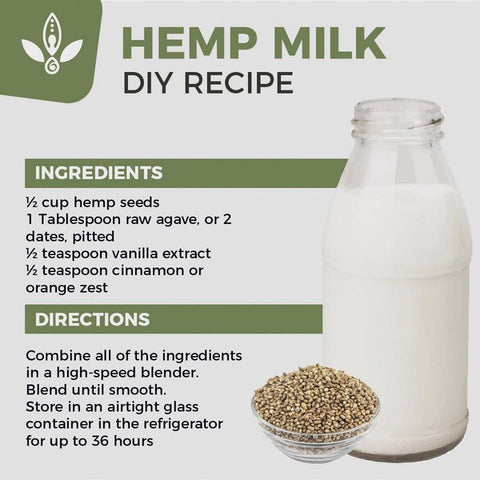 hemp milk benefits and recipes