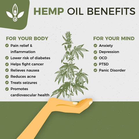 Full Spectrum Hemp Oil benefits