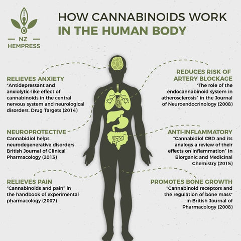 cannabinoids and arthritis