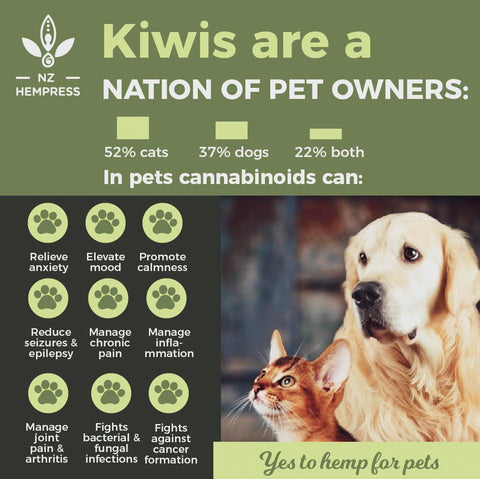 buy pets hemp oil nz