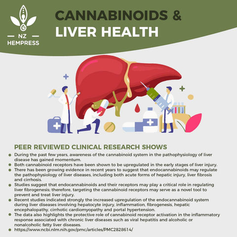 cbd hemp oil for liver health