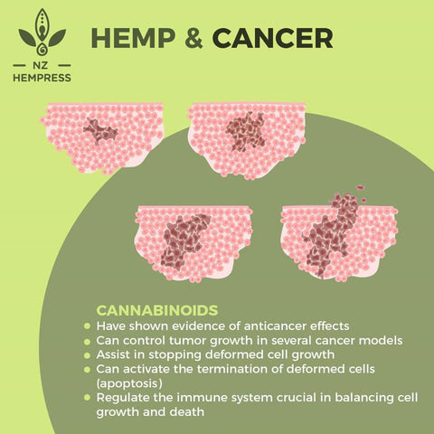 cannabinoids benefit cancer nz