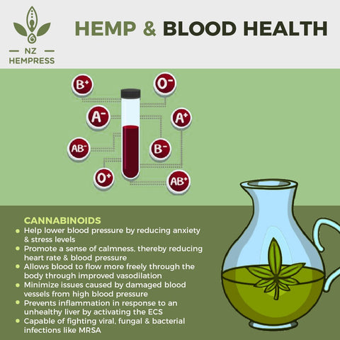 how hemp works for blood health