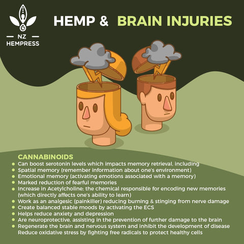 how hemp works for brain injuries