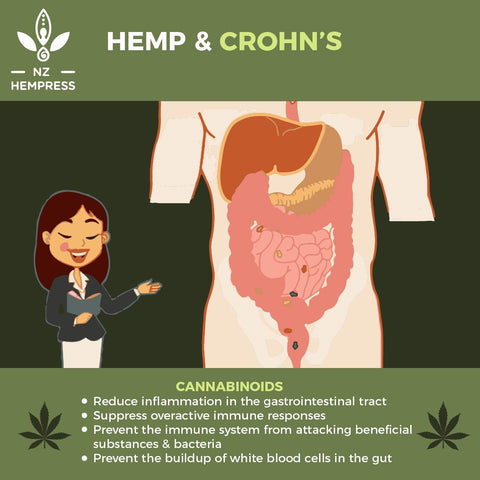 Is Hemp oil good for Crohn's disease