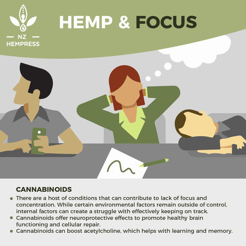 how hemp works for focus and concentration 2