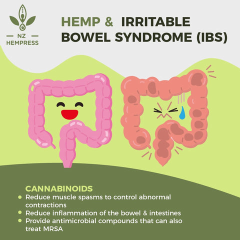 Can CBD Help with IBS