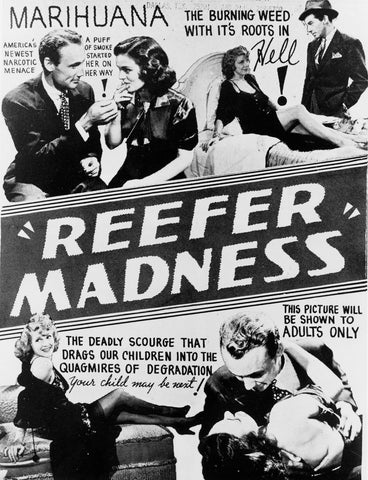 new zealand reefer madness cannabis referendum