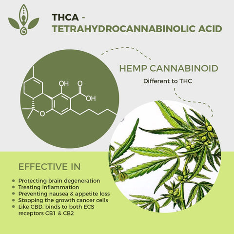 what are cannabinoids explained
