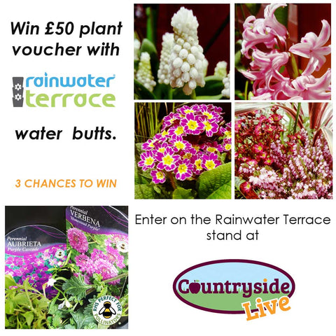 win plants at countryside live with rainwater terrace water butts