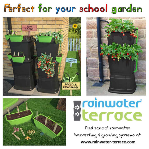 water butts for schools