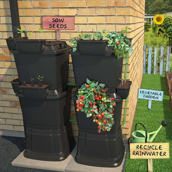 School Starter Kit: Double 2 Tier Rainwater Terrace Modular Water Butt (268 Litre)