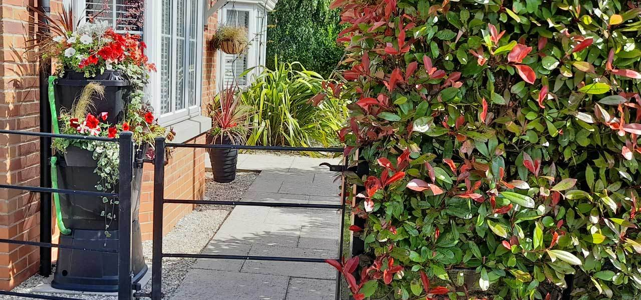 Terracotta modular water butts on a patio