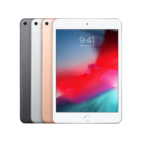 Ipad mini select 01903 fmt whh