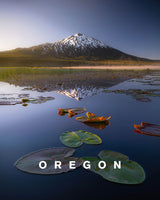Morning Lilly Pads With Oregon Type