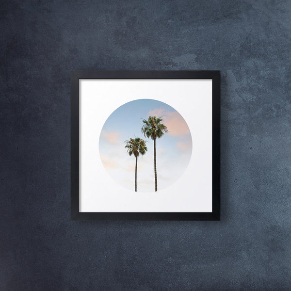 Iconic Circular California Palm Trees