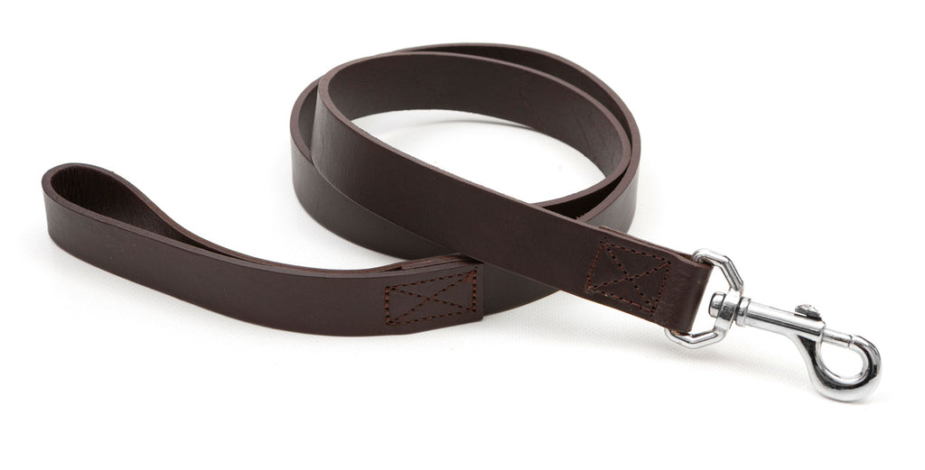 Regent - Leather Dog Lead