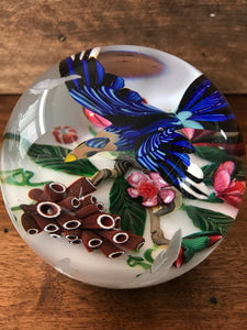Mikael Hingant Exotic Bird Paperweight