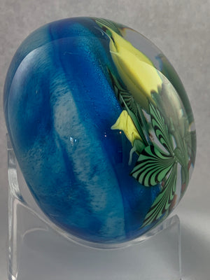 Chris Sherwin yellow roses Paperweight