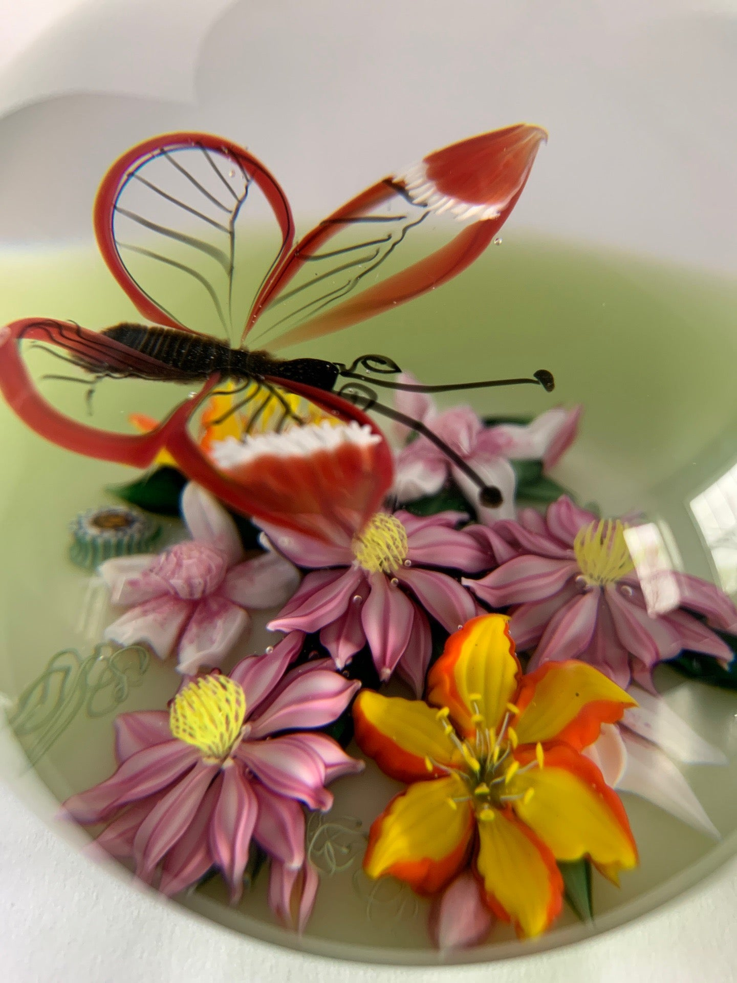 Richard Loesel Transparent butterfly Paperweight