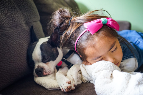 A little girl sleeping with a dog on a couch.