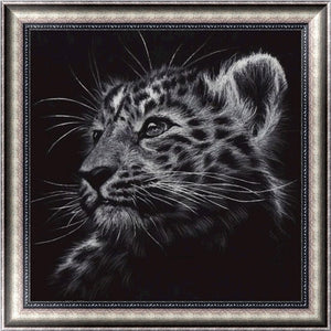 5D DIY Diamonds Cat Embroidery Art