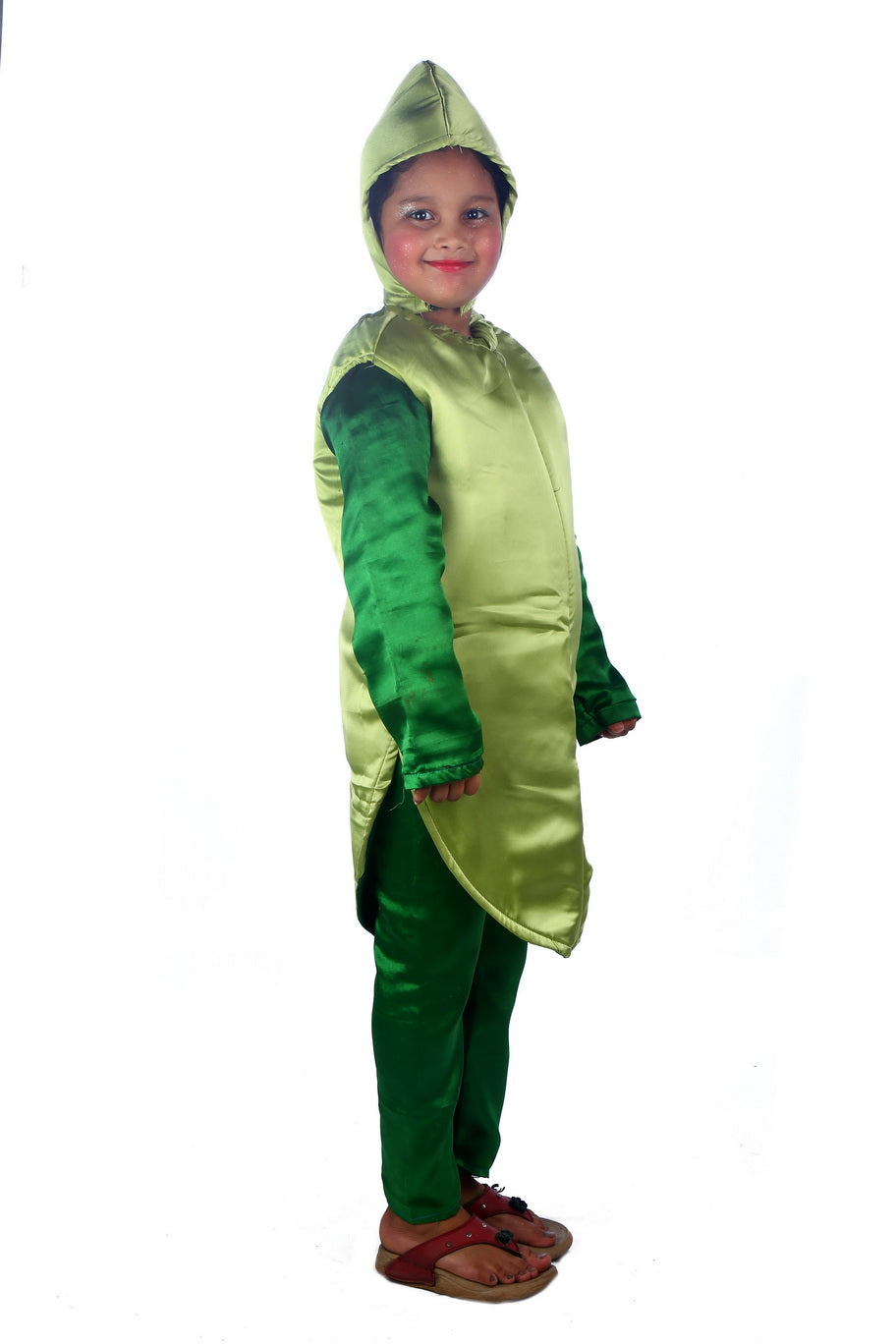 Green Chili Vegetable Costume