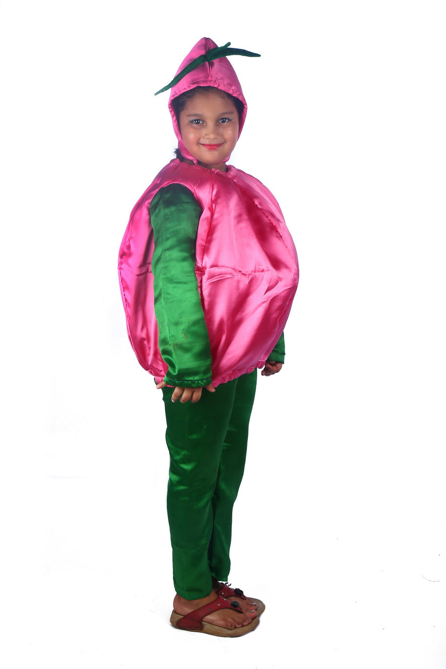 Onion Vegetable costume