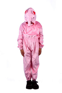 Farm Animal Pig costume