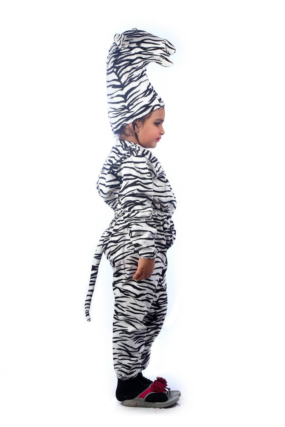 Wild Animal Zebra costume